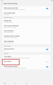 Tablet Other Security Settings